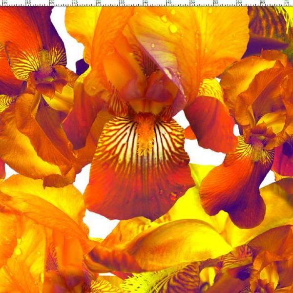 Bilde av Flower - French Terry