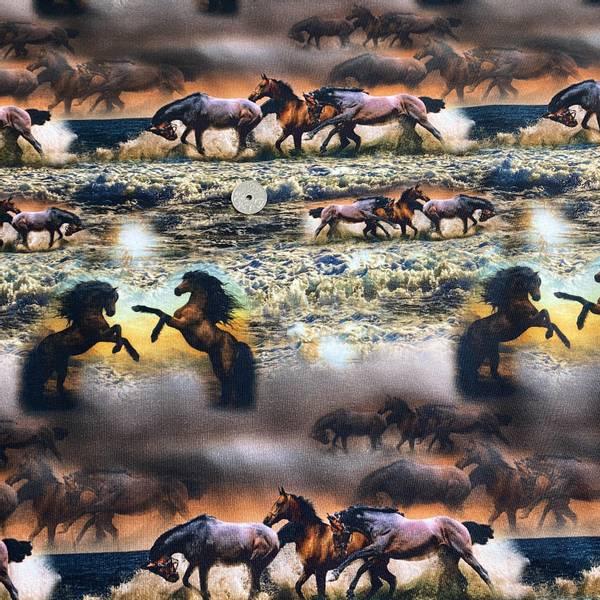 Bilde av Hester i galopp