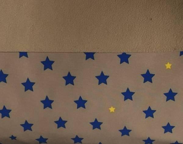 Bilde av Brun m/kongeblå stjerner - Softshell