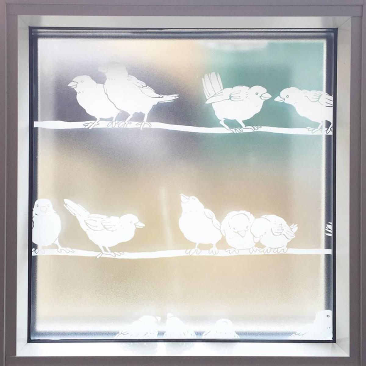 Vareprøve: Static Premium Filippa vindusfolie