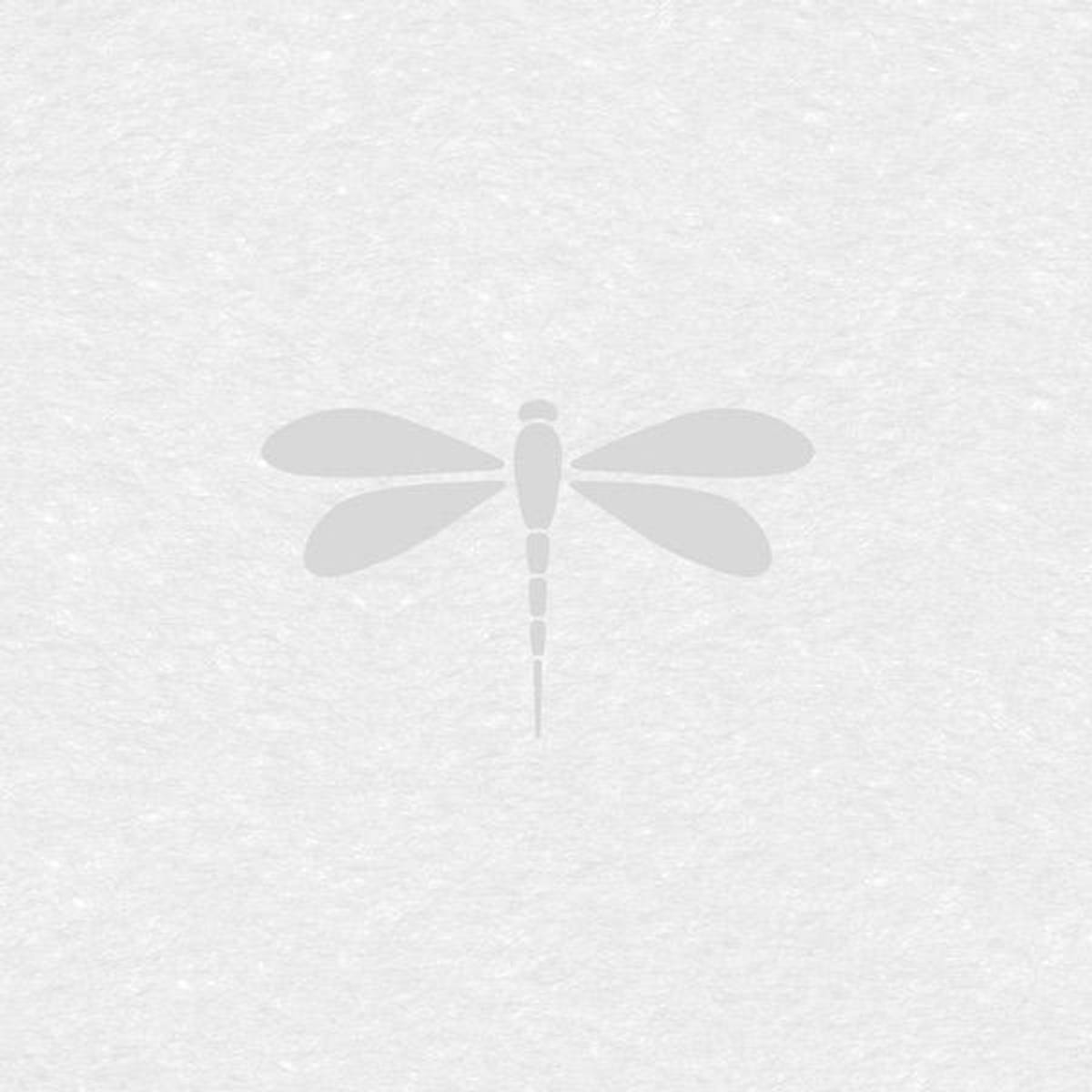 Vareprøve: Static Premium Nibella vindusfolie