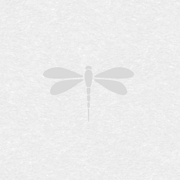 Bilde av Static Premium Nibella vindusfolie