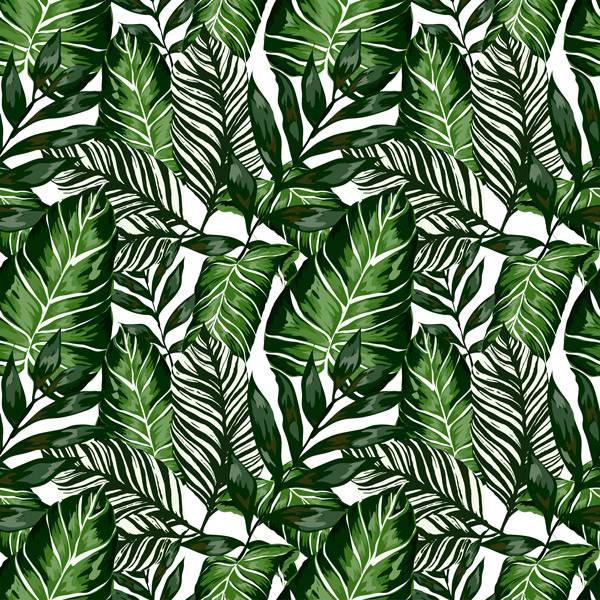 Bilde av Tropical kontaktplast