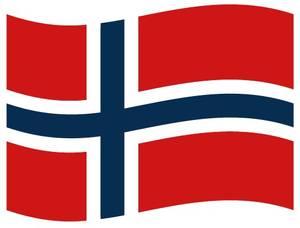 Bilde av Tøymerker Norsk flagg vaiende 4x6cm