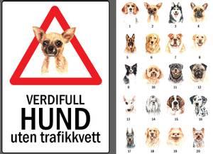 Bilde av Verdifull hund uten trafikkvett SKILT 30x42