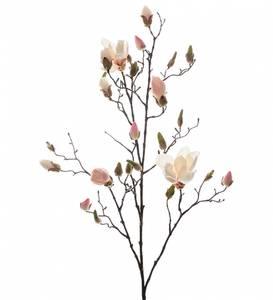Bilde av Magnolia Gren, Rosa 110 cm -