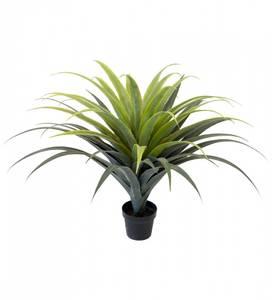 Bilde av Agave 110 cm - Mr Plant