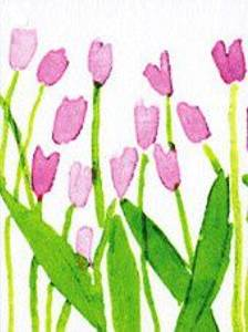 Bilde av nobhilldesigners, Tulipan