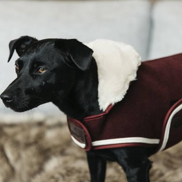 Bilde av Kentucky Dog Rug Heavy Fleece