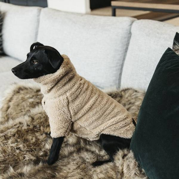 Bilde av Kentucky Dog Sweater Teddy Fleece