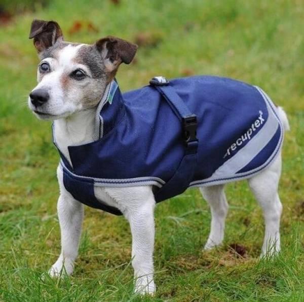 Bilde av Bucas Recuptex Therapy Dog Rug