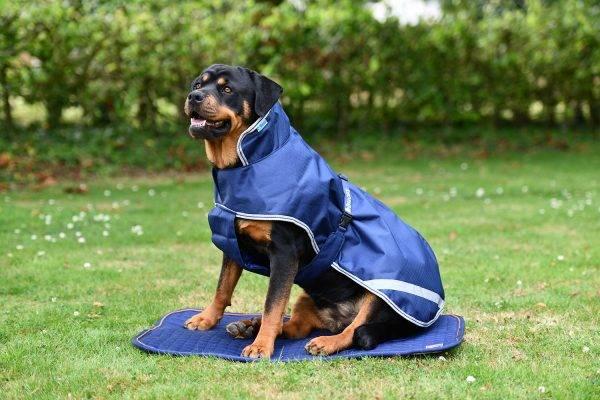 Bilde av Bucas Therapy Recuptex Dog Bed Topper