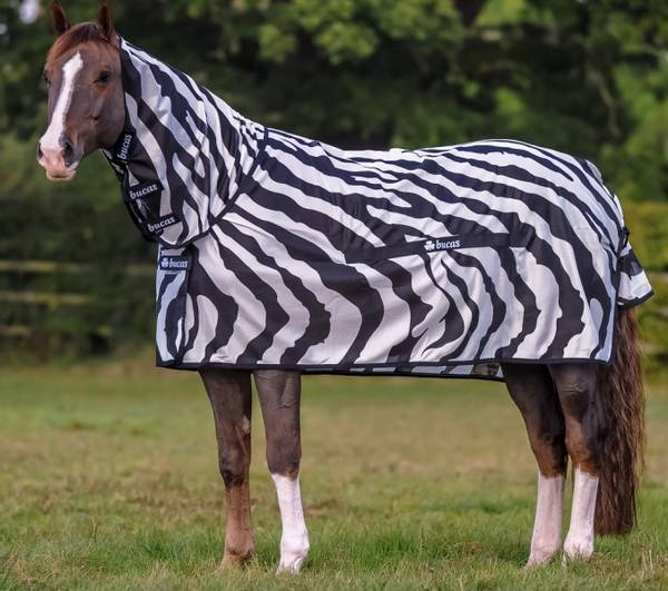 Bilde av Bucas Zebra Buzz - Off