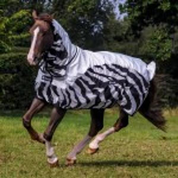 Bilde av Bucas Zebra Buzz - Off Rain
