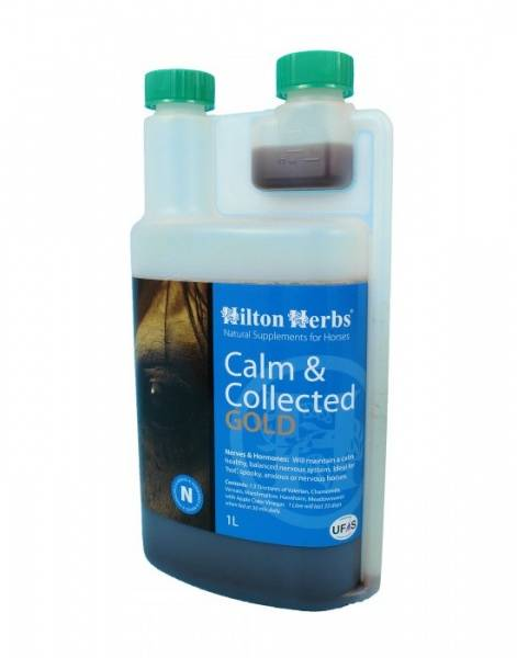 Bilde av Hilton Calm & Collected Gold 1 l