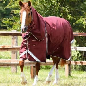 Bilde av Premier Equine Buster Zero Turnout