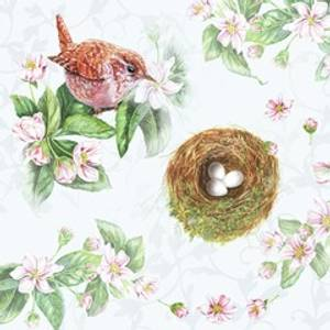 Bilde av Napkin 33 Watching Nest #