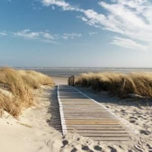Bilde av Servietter Walking to the sea