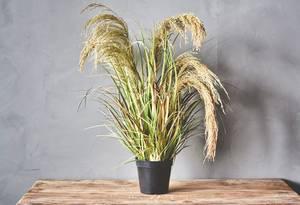 Bilde av Kunstig plante, store siv