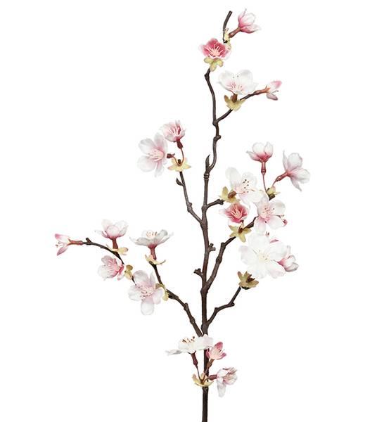 Kirsebærgren 60cm
