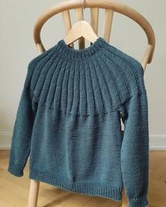 Bilde av Haralds Sweater Junior