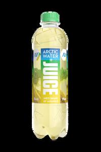 Bilde av Arctic Water + Juice Ananas 0,5l