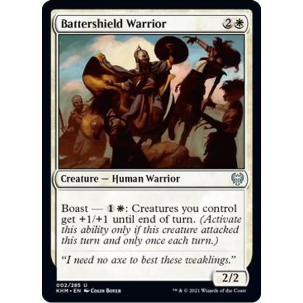 Bilde av Battershield Warrior