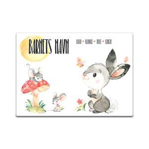 Bilde av Fødselsplakat Harepus