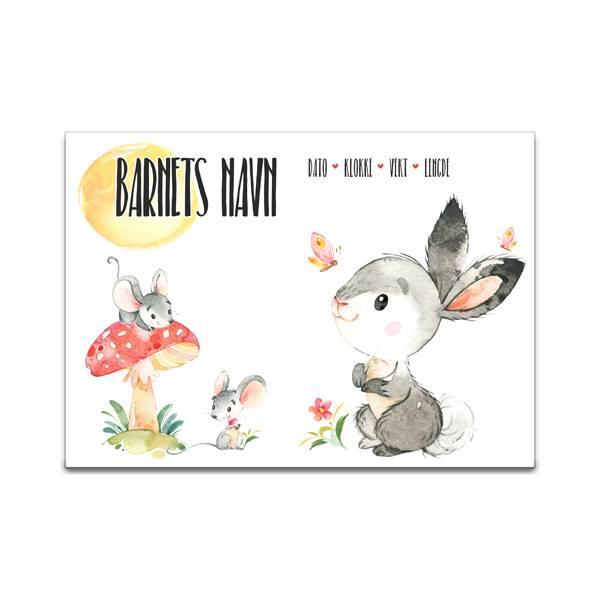 Fødselsplakat Harepus