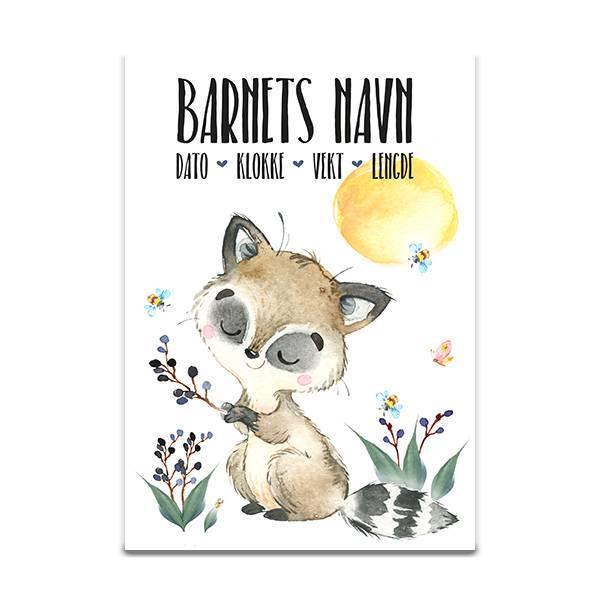 Fødselsplakat Vaskebjørn på bærtur