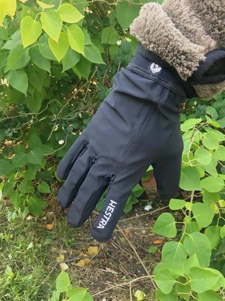 Bilde av Hestra Nimbus Glove