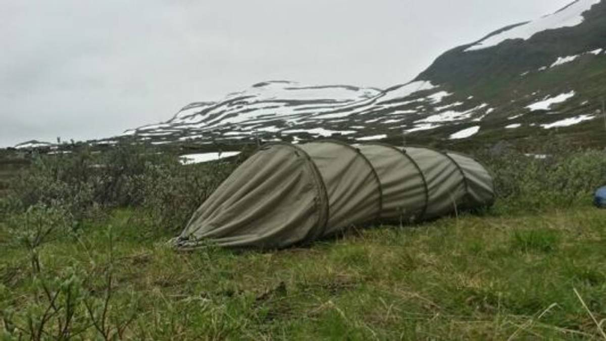 C.A.T™ Compact All-round Tent