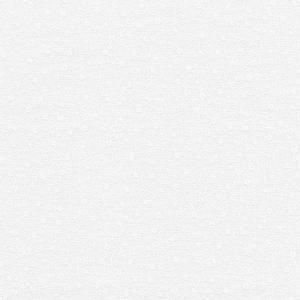 Bilde av Bomull - Hvite grener på hvit bakgrunn