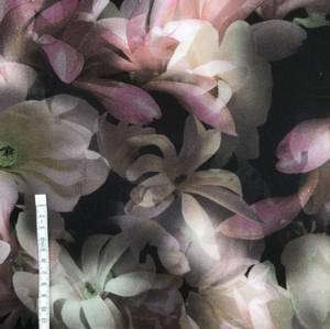 Bilde av Viscose blomster med sort bakgrunn