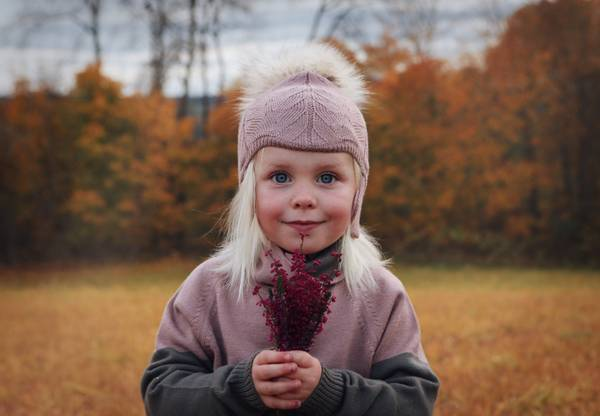 Bilde av Lue Norfolk i merinoull med bomullsfôr, pelsdusk, støvrosa
