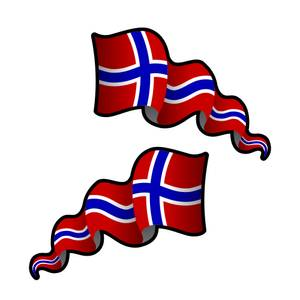 Bilde av Flagrende vimpelflagg