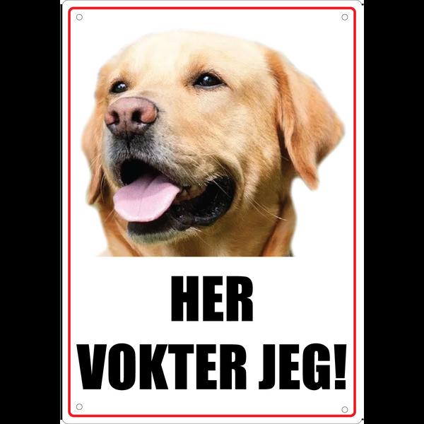 Bilde av Vaktskilt Hund Eget Bilde