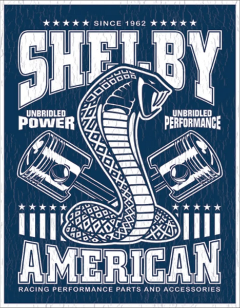Bilde av Shelby Unbridled Power