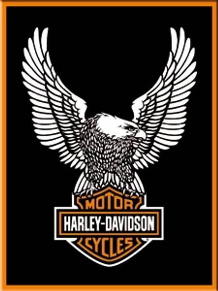 Bilde av Harley-Davidson Eagle