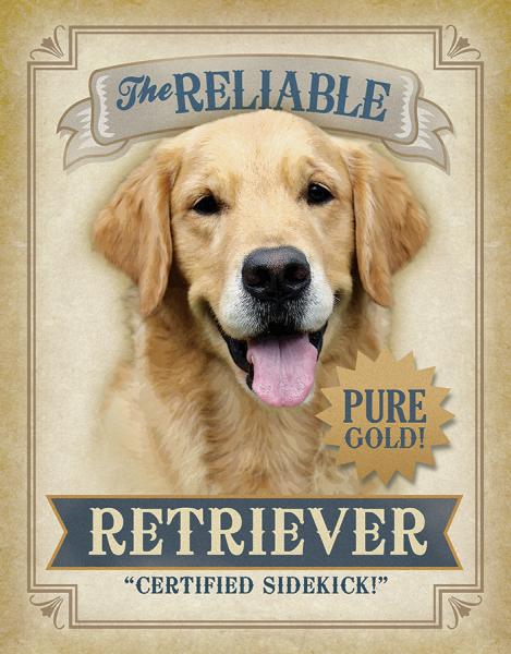 Bilde av Reliable Retriever
