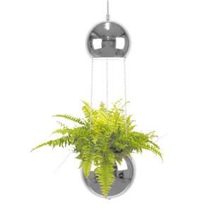 Bilde av Planter - taklampe krom