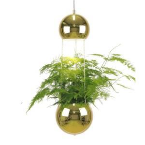 Bilde av Planter taklampe messing
