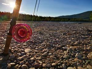 Bilde av Laksefiske Målselva