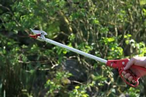 Bilde av ARS Forlenget rosesaks med gripefunksjon, 10mm