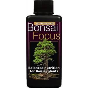 Bilde av Bonsai Focus, organisk bonsainæring
