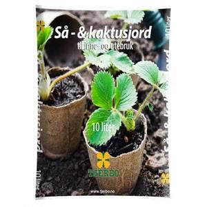 Bilde av Så og Kaktusjord 10 liter