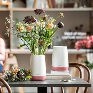 Bilde av Lechuza YULA Flower, vase til snittblomster