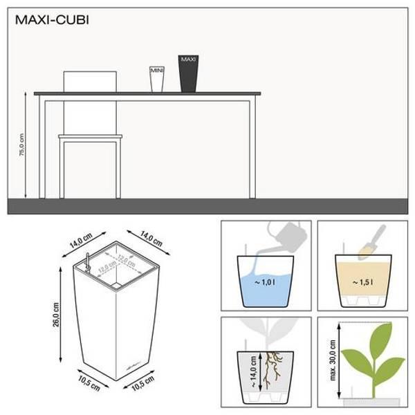 Lechuza Maxi Cubi, Kull Metallisk