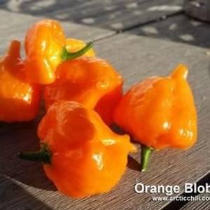 Bilde av Orange Blob