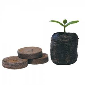 Bilde av Jiffy plug, coco coir, 10 stk